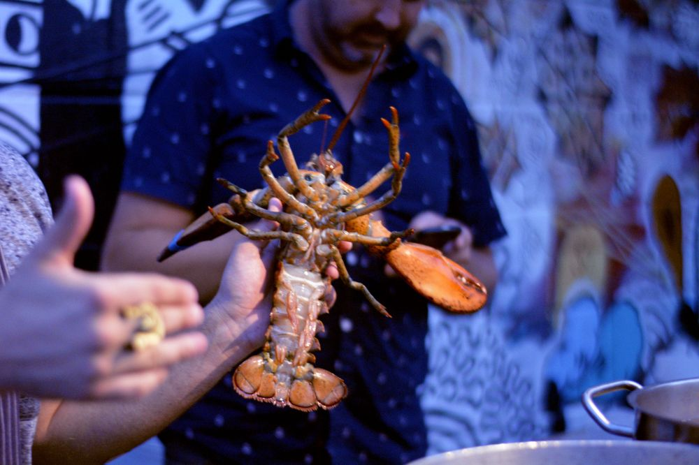 Lobster Palooza 2015 Chef Matt Dean Pettit of Rock Lobster Food Co.